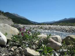 Tetsa-river-pebbles